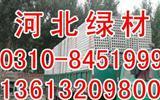 河北邯郸轻质隔墙板厂家施工方案绿色低碳环保抢占市场高地-墙板