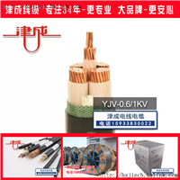 津成电线电缆衡水,交联电缆3芯4芯5芯电缆