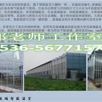 阳光板温室,高跨度温室,丰科农业pc板温室