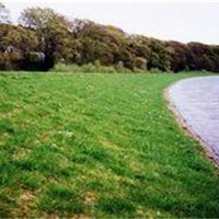 环保植生毯(环保草毯)