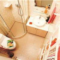 远铃整体浴室 浪漫花镜1616SD型(标准款)
