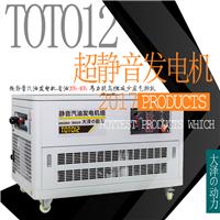 大泽12kw静音汽油发电机/投标专用发电机组
