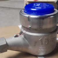 DN15不锈钢水表