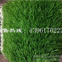 北京足球场人造草坪选择无锡林杰