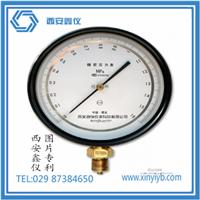 西安鑫仪仪表厂 不锈钢压力表