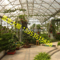 滨州花卉种植连栋智能玻璃温室造价