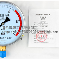 膜盒压力表YE100  2.4级