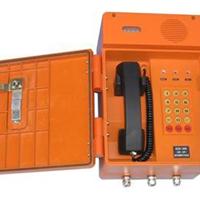BR-2化工防爆扩音对讲话站数字防爆对讲电话