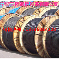 不锈钢管式微型光缆GYXSW(2-48芯)