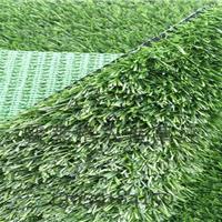 人造草皮多少钱一平方