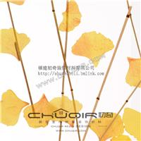 供应特殊饰面板,树脂夹层植物银杏叶