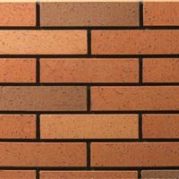 烧结普通砖,新型建材