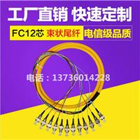 12芯束状尾纤(SC/APC/UPC/PC)