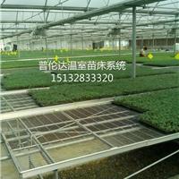 移动苗床 固定 苗床网片 苗床网专业厂家低价供应 量大价更优
