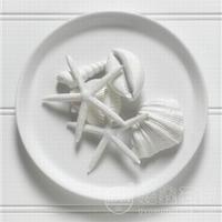 细度325目的特白半水石膏粉