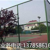 包塑勾花护栏网生产厂家 球场专用围网 浸塑球场防护网