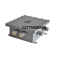 防爆控制箱XZK100