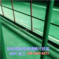 脱硫塔玻璃鳞片胶泥防腐照片图片