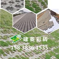 厂家生产广场砖、透水砖、植草砖、草坪砖