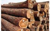 浅谈木材禁令 对集成墙面等装饰行业的影响-集成墙面