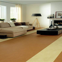 贵阳PVC地板胶
