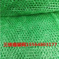三维植被网2层国标/非标浙江金华厂家常年低价直供