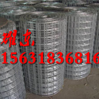 焊接钢丝网/电焊网隔离栅/浸塑网围栏-河北耀东丝网