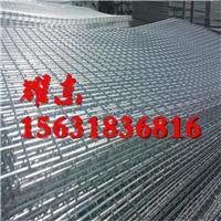 电焊网挂片/养殖电焊网/圈玉米网-河北耀东丝网