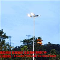 海南户外6米球场灯柱直销 室外8米球场灯杆 厂家定制照明灯杆