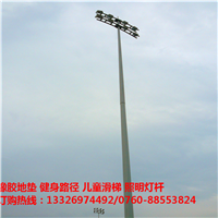福建新农村道路灯杆照明规格 耐用灯杆 中山柏克泰体育厂