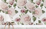 写真花卉壁纸让你永远睡在春天里-re0壁纸壁纸