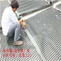 南京2.5高排水板 隔根防穿刺排水板支持验货(图)
