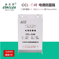 供应CCL-C40普及型电源防雷箱20KA-40KA2级防雷箱
