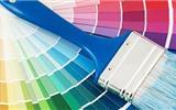 你家的乳胶漆真的环保吗?-乳胶漆会发霉吗
