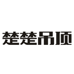浙江楚乔电气有限公司