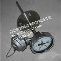 供应双金属温度计、管道温度测量、PT100