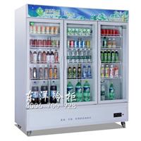 广州便利店冷柜 便利店饮料柜