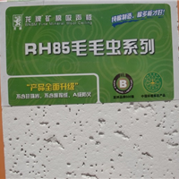 龙牌RH85毛毛虫矿棉板
