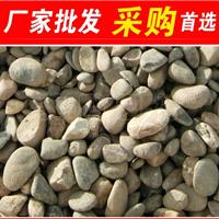 天然鹅卵石,韶关造型独特鹅卵石,大量批发