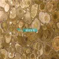 天然木化石家横切纹正切纹木化石桌面台面