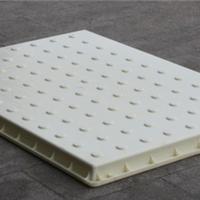 高铁地铁专用疏散平台水泥盖板模具