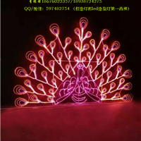 供应灯会灯海灯光节产品,LED造型灯-孔雀