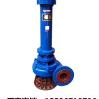 临龙3寸立式污水泵80NPL50-20