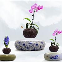 供应磁悬浮盆栽,陶瓷底座厂家低价批发