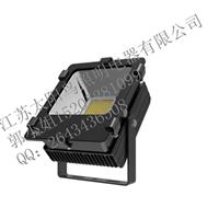 太阳鸟LED投光灯TTG004